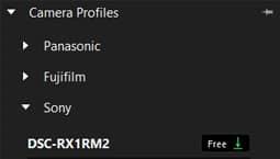 Modular Camera Profiles